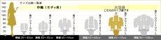 画像13: 【スタンダード 鳴滝清流胡蝶蘭(なるたきせいりゅうこちょうらん) 5本立て】*白*(大輪)<7つの特典付き!> (13)